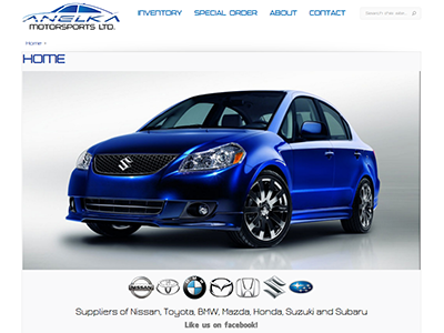 Website designed for Anelka Motorsports